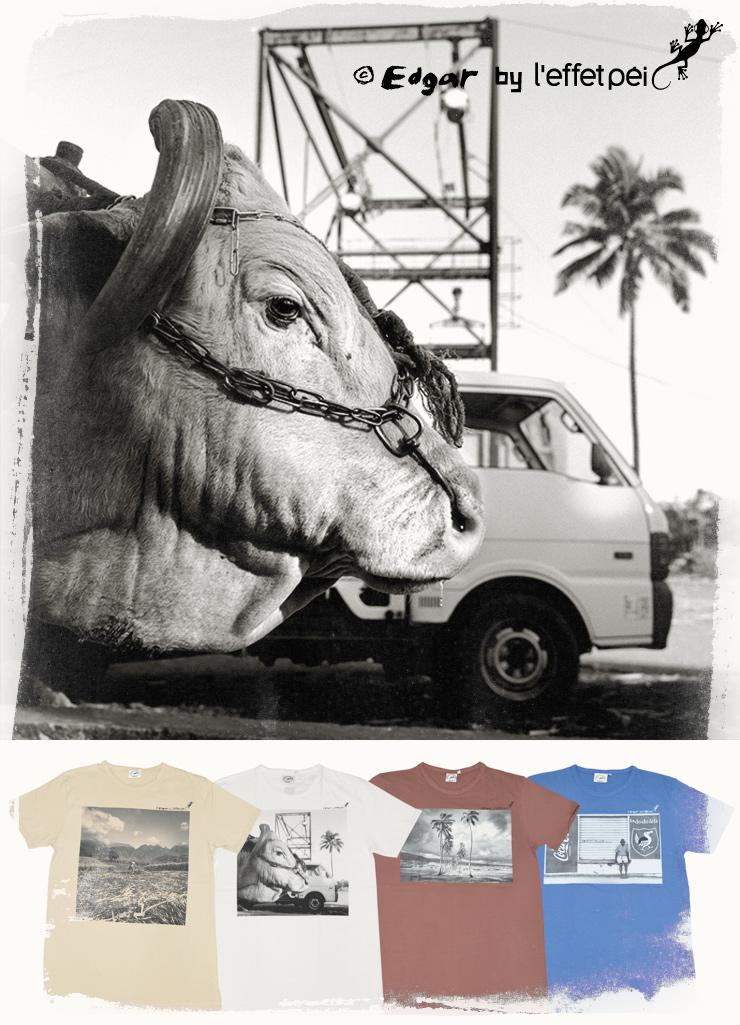 Collection de tee-shirts du photographe Edgar